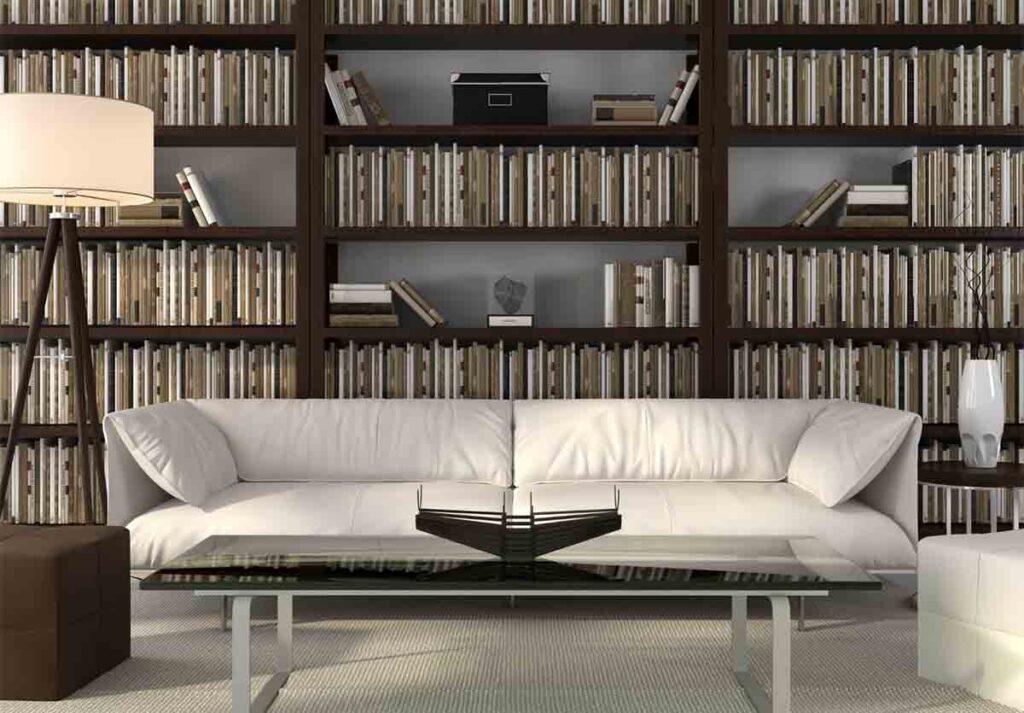 Bookshelves in modern home